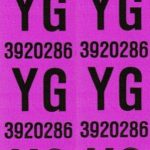 This is an image of a pair of 1967 Camaro SS 396 Front Coil Spring Tag Tape Decal, YG